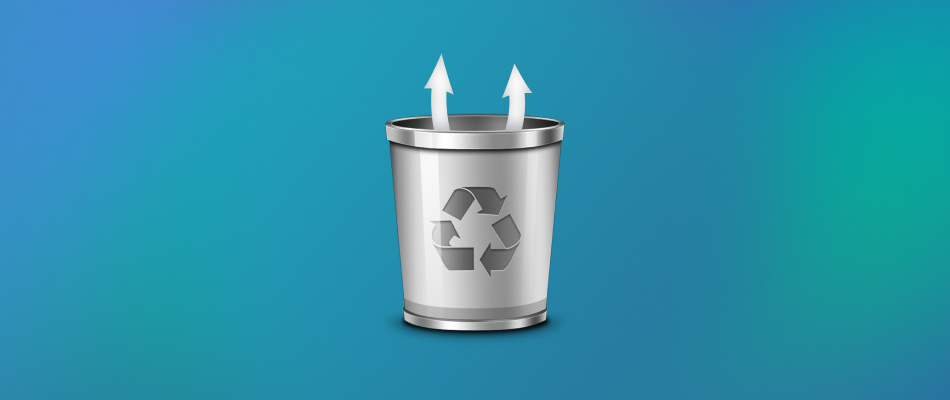 Recover Deleted Files from Recycle Bin in 5 Easy Steps